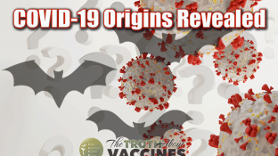 COVID-19 Origins Revealed