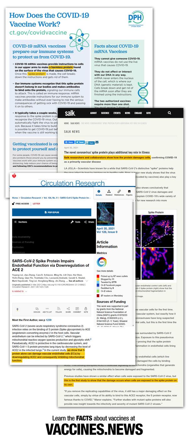 DPH-Salk-Circ-Research-600