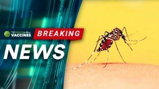 During Dengue Outbreak, Philippines Rejects Dangerous Vaccine