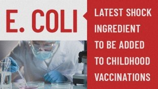 E. coli: Latest Shock Ingredient in Childhood Vaccinations (+ Vaccine Ingredient List)